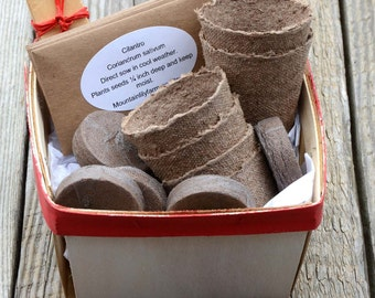 Salsa Garden Seed, Garden Gift Basket, Heirloom Tomato Seeds, Great Hostess Gift or Gift for Gardener, Salsa Seed Varieties in Basket