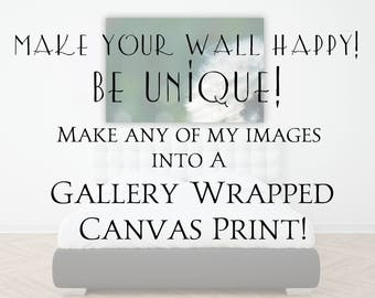 Canvas Print Upgrade, Ready to Hang Canvas Wall Art, Choose ANY of my images and turn it into a Beautiful Gallery Wrapped Canvas