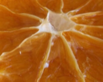 20 Dried Orange Slices