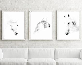 Horse Photography, Horse Print, Horse Photo, art print set, nursery print set, nursery decor, animal nursery art, baby room, kids room