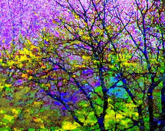 Stained Glass 8x12 Tree Photography Modern Wall Art Abstract Impressionism Purple Color Nature Print