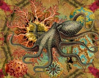 Wondrousstrange Design COTTON  Swatch Octopus Hackle Ocean Fantasy Yellow Red Teal Blue Grey