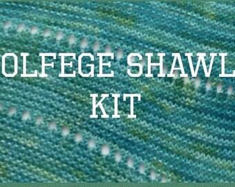 solfege shawl kit, sock yarn, shawl knitting, shawl kit, shawl knitting kit