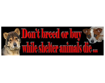 Don't breed or buy while shelter animals die! Help save more lives by displaying this Bumper Sticker!This Bumper Sticker