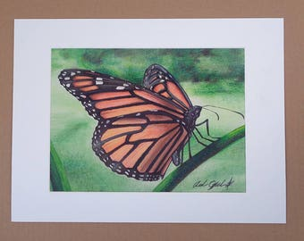 Art Print, Butterfly Art, Insect Art, Insect Drawing, Butterfly Print, Nature Print, Nature Art Print, Realistic Art, Monarch Butterfly