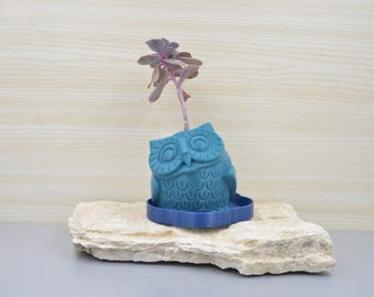 Owl Planter/gift for him/father's day gift/drainage and saucer/Mini planter/3D planter/succulent planter/cactus planter