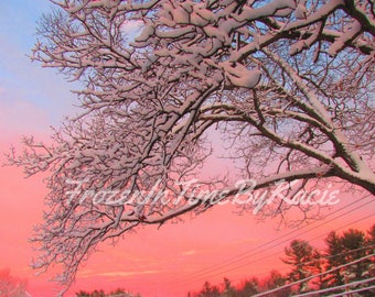 Snowy morning - Digital download photo