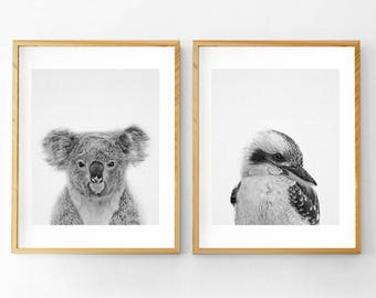 Australian Animal Print, Koala Print, Koala Bear Print,Kookaburra Print, Nursery Animal Print, Nursery Animals, Set of 2 Prints, Wall Art
