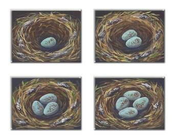 Assorted Nest Notecards Nest Card Bird Stationery