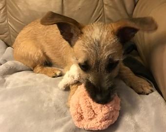 Crochet (Cat/Dog) Toy Ball