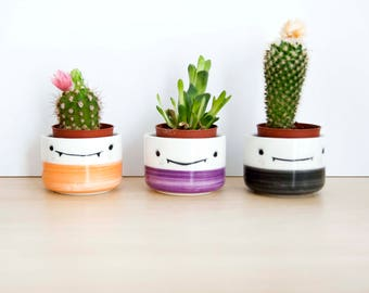Halloween special ceramic planters for succulent, Ceramic plant pot, Ceramic small planters set, Cactus planter, Pottery planter, Noe Marin