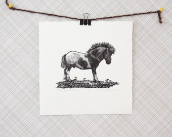 Pony Art Print Original Hand Printed Engraving