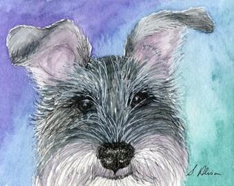 Schnauzer dog 8x10 print - all ears
