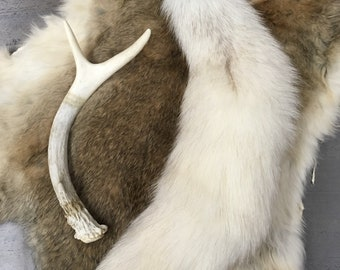 Blue Arctic White Fox Tail Keychain Tanned Animal Pelt Real Fur Taxidermy