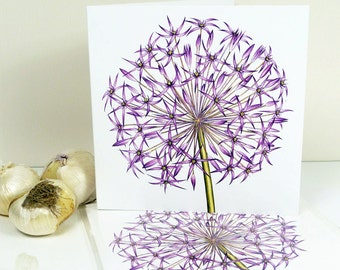 Allium Christophii Botanical Flower Painting Luxury Greeting Card