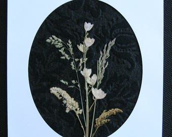Pressed Flower Pic. 252   NEW