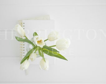 White floral stock photography | Tulips stock photo - Business stock photo - Flower stock photo - White stock photo - Minimalist stock image