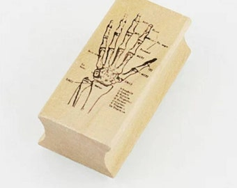 Hand Skeleton Anatomy Stamp
