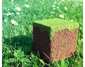 Minecraft Inspired Realistic Grass Block