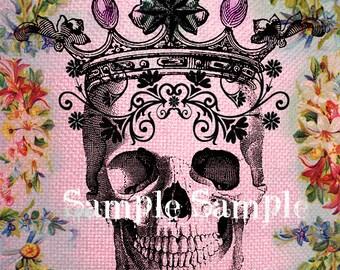 NO01 téléchargement automatique - feuille de collage numérique illustration - ART Collage - anatomie tête de mort - portes techniques mixtes