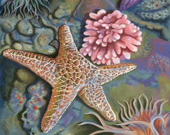 Tidepool (Art Prints available in multiple sizes)