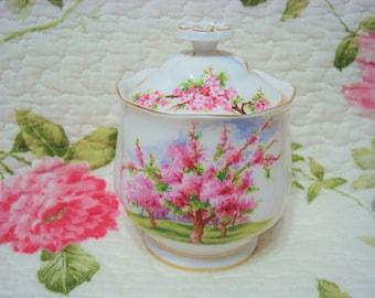 Beautiful Vintage Royal Albert BLOSSOM Time Jam/Preserve/Marmalade Jar.