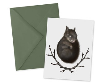 Sleeping Baby Squirrel Card 1pc Blank A2 Note Card