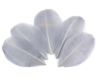 50 Pieces Gray Feather 5-8cm (YM81)