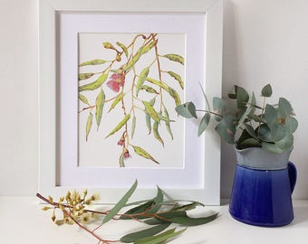 Red flowering gum print A5, 10x8, A4; Modern botanical print wall art; Australian art gift; Eucalyptus plant illustration