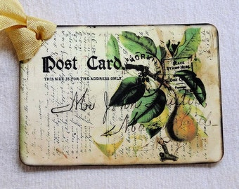Vintage Style Yellow Pear Postcard Gift or Scrapbook Tags or Magnet #159