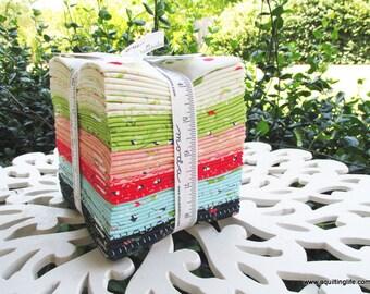 The Front Porch One Yard Bundle - Sherri & Chelsi - 27 pieces