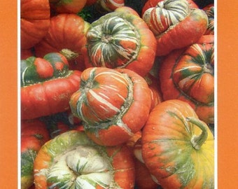 Pumpkins and squash - Photo card