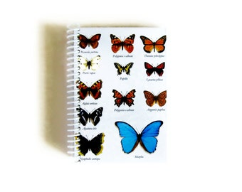 Butterflies Classification Notebook - A6 Spiral Bound