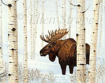 CARD, moose, aspen trees, bull moose, winter, snow, note cards, blank note cards, Ellen Strope. moose decor, cabin decor, lodge decor
