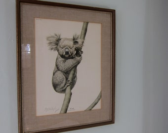 Vintage Guy Coheleach Koala Print Framed and Signed 1972