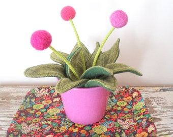 Wool Plant - Potted Fake Plant - Pink Pom Pom Flower Bouquet - Knit Leaves - Ombre Flowers, Craspedia - Modern Centerpiece Green Felt Plant