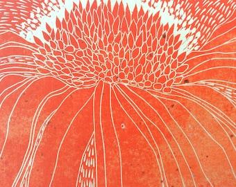 linocut - JUNCTURE // 12x16 art print // printmaking // block print // flower print // wildflower // coneflower // echinacea // orange red
