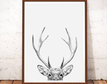 Deer Antlers, Deer Print, Woodland Animals, Nursery Decor, Deer Antlers Decor, Woodland Nursery, Deer Antlers Poster, Deer Printable, Deep