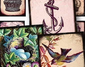 Natures Royalty Digital Collage Sheet in 1 Inch Squares Vintage Birds Flowers Crowns for Pedants Jewelry Cards Crafts and More piddix 756