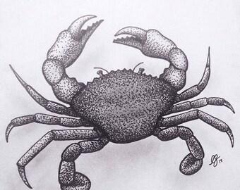 Crab Drawing Print - A4