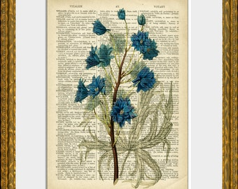 BLUE FLOWERS recycled book page art print - an upcycled antique dictionary page with a retooled antique flower illustration - home decor