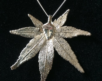 """Large Sterling Silver Japanese Maple Leaf Necklace, Real Leaf """"dipped"""" in Sterling Silver with 20 inch Sterling Silver Chain, Free Shipping"""