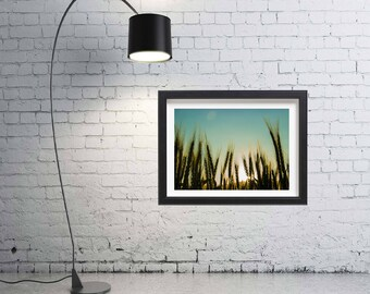 wheat fields sunset wall art nature photography print bedroom decor