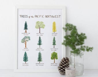 Pacific Northwest Trees Art Print / Washington State Art / Trees Art / Pacific Northwest Art / Washington Art Print / Gifts for Him / Trees
