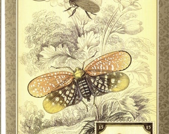 Insect Vintage Postcard Treehopper & Planthopper Insects with a Leaf Beetle Stamp Posta Insecta Art Postcard PSS 2029