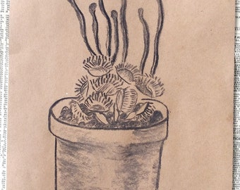 "Venus fly trap Original charcoal design, one of a kind wall art - 9""x12"""