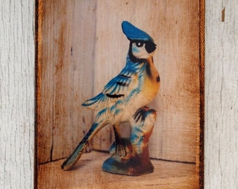 Vintage Toy Blue Jay  Bird   Art/Photo - Wall Art 4x6