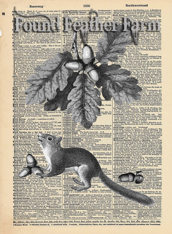 "Vintage Antique Dictionary Page with Antique Print ""Do You Like Nuts?"""