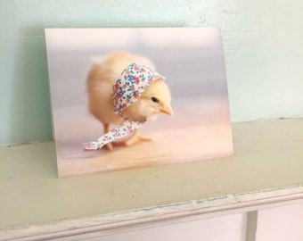 Chicken Wearing A Miniature Floral Bonnet Chicks in Hats Baby Animal Cards Cute Stationary #93