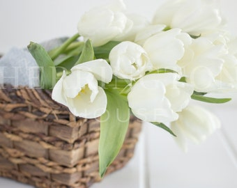 Tulips stock photography | White tulips stock photo - Flower stock photo - Bouquet stock photo - Neutral stock photo - Flowers in basket